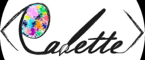 طراحی سایت پالت